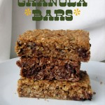 Decadent Granola Bars